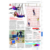Page 331 Catalogus