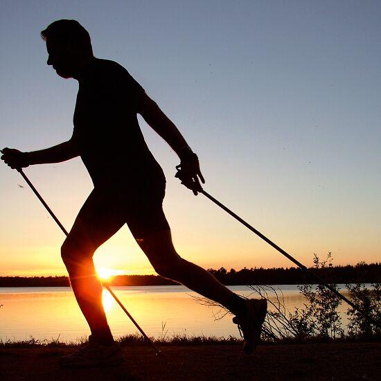 """Axess Nordic Walking Stokken """"W40"""" 105 cm"""