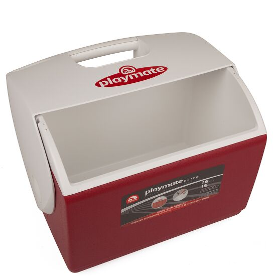Igloo® Grote Verzorgers-IJsbox Zonder inhoud