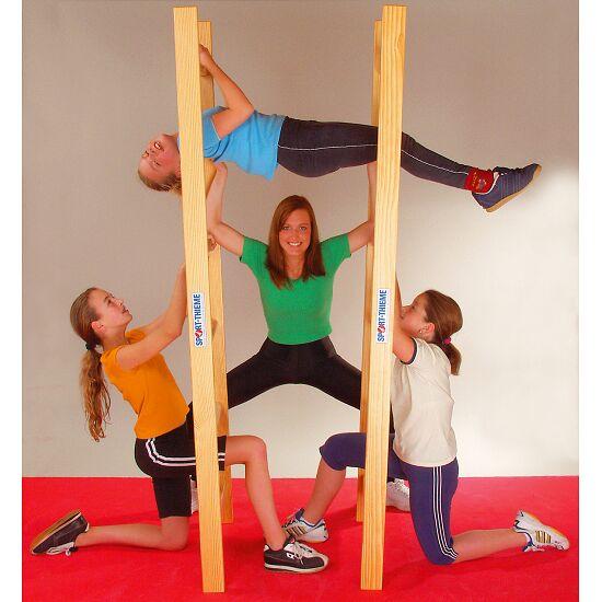 Sport-Thieme® Akrobatikladder-paar