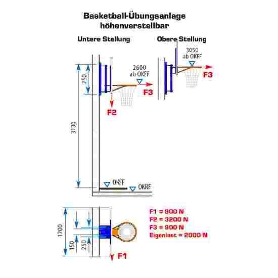 Sport-Thieme basketbal-oefeninstallatie Met hoogteverstelling