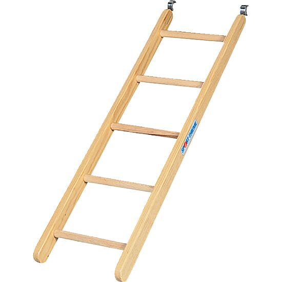 Sport-Thieme® Combi-Ladder