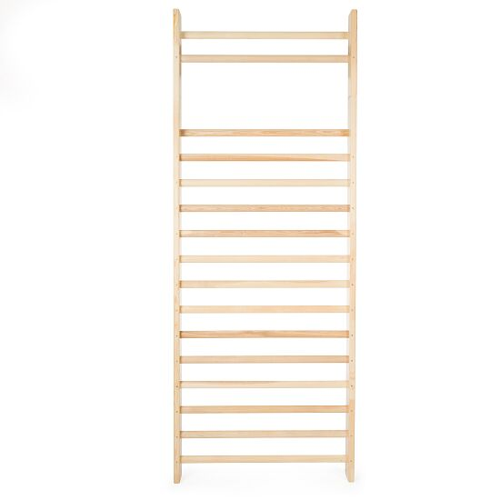 Sport-Thieme® Enkelvoudig Wandrek, 260x100 cm, conform DIN EN 12346