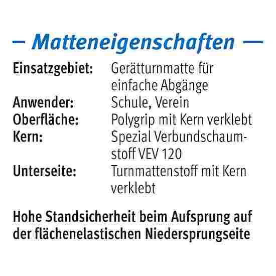 "Sport-Thieme Toestel turnmat ""GTM 3000"" 200x100x6 cm, 17 kg, Blauw"