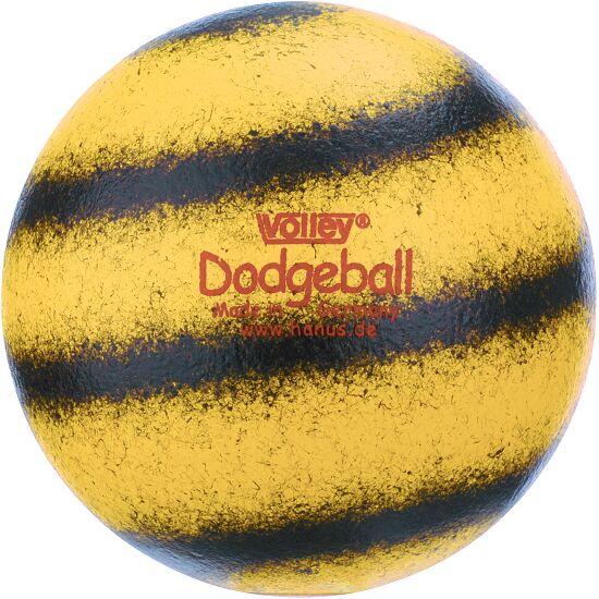 Volley Bal Dodgebal