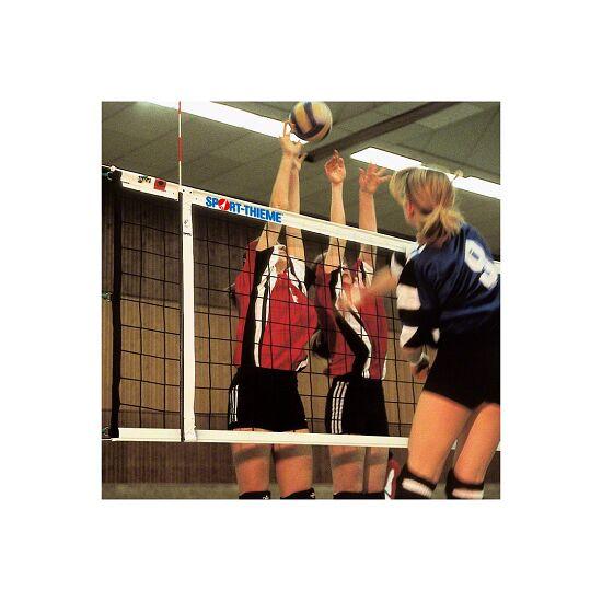Volleybal Toernooinet DVV I