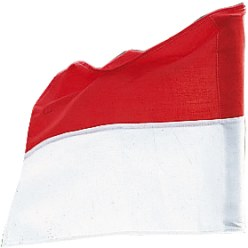 Sport-Thieme Vlag  voor grenspaal tot ø 30 mm Neon geel