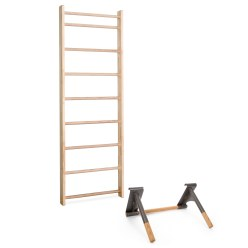 Sport-Thieme® Wandrek met pull-up dip-bar
