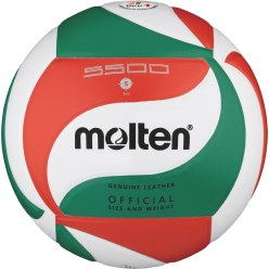 "Molten® Volleybal  ""V5M5500"""